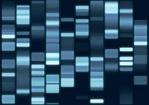 Parásitos moleculares en el genoma humano