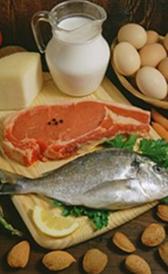proteina para dieta proteica