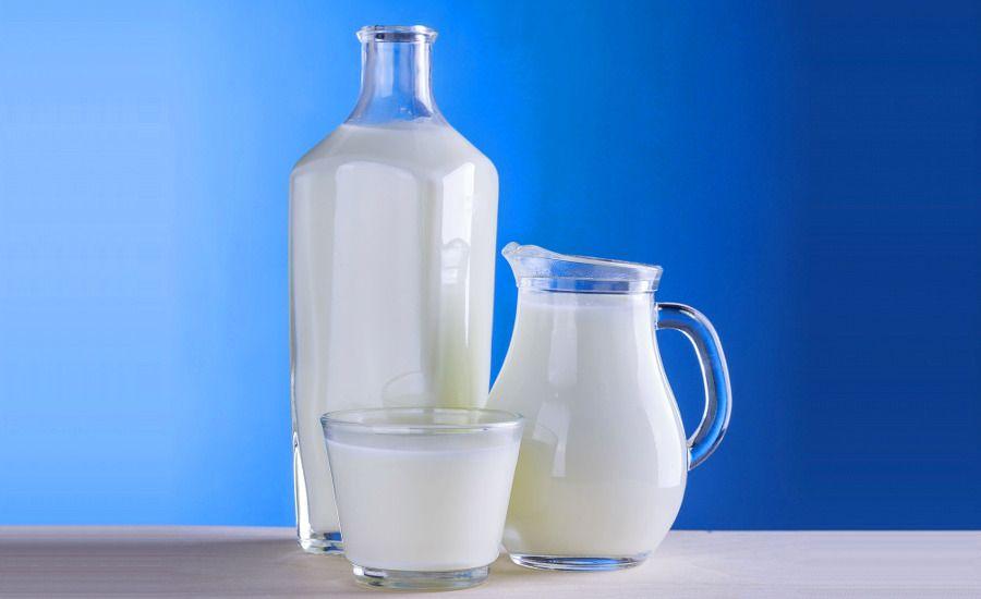 La leche, un alimento alto en proteínas