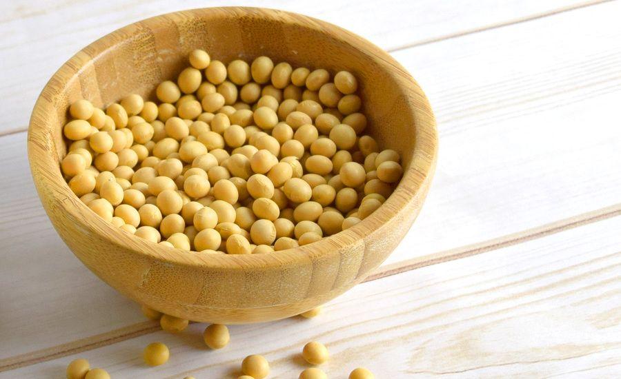 La soja es un alimento rico en proteínas