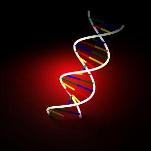 Estructura de proteínas con modelos informáticos