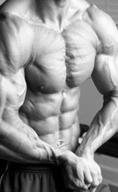Proteínas y masa muscular