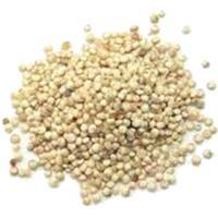 Proteínas de la quinoa