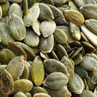 Proteínas de las semillas de calabaza para veganos