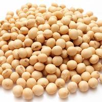 Proteínas de la soja para veganos